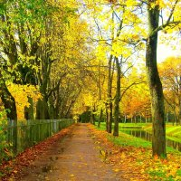 В парке после дождя проглянуло солнце  - 1 :: Сергей