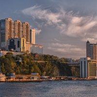 Владивосток. Спортивная гавань :: Евгений Кучеренко