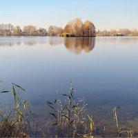 осень на илеке :: Александр Никишков