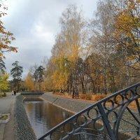 Осенний парк :: Ирина