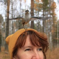Одноногий Джо :: Nataliya Belova