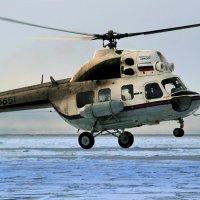 Арктический извозчик. :: игорь кио