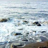 Белое море. :: Надежда