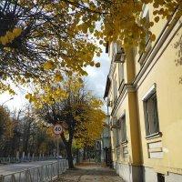 Рязань. Улица Вознесенская. :: Yulia Raspopova