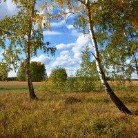 Осенний  вальс :: Геннадий Супрун