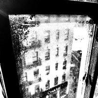 А из нашего окна... :: Slava Sh