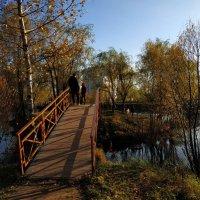 Вам все еще не нравится октябрь? :: Андрей Лукьянов
