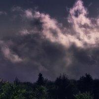 Облако над лесом :: Роман Попов