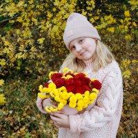 Осень :: Иллона Солодкая