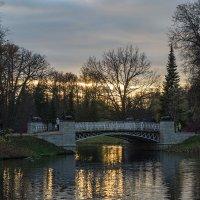 Олений мост 1 :: VL
