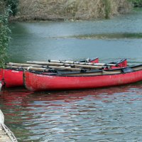 Пироги. Музей индейцев. Река Иордан. Израиль :: Валерий Подорожный