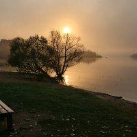 Осеннее утро :: галина северинова
