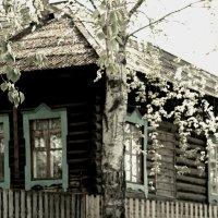 Домик в деревне :: Любовь Чащухина