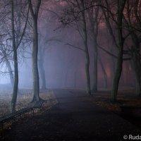 В парке теней :: Сергей