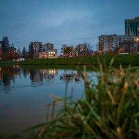 Вечер в Питере :: Роман Алексеев