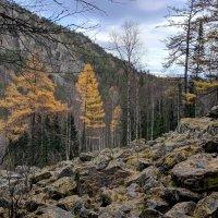 Уральская осень :: Лариса Яворская
