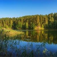 Гляжу в озера синие :: Shapiro Svetlana
