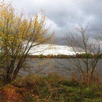 Осенью у реки :: Андрей Снегерёв