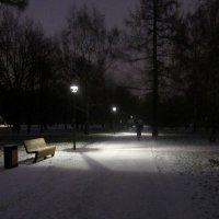 Вечером в парке :: Ольга Довженко