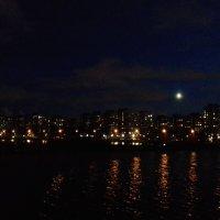 Ночь :: Сапсан