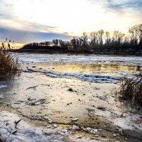 Морозное утро :: Наталья Татьянина