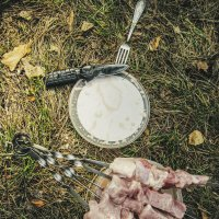 Пикник на траве :: Сергей Царёв