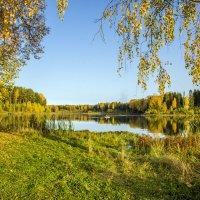 Аленушкин пруд :: Елена Чудиновских