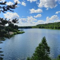 Лесное озеро :: Мария Гуськова
