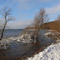Зимние острова :: галина северинова