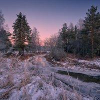 Краски зимнего рассвета ... :: Roman Lunin