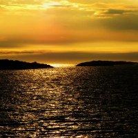 В золоте заката. :: игорь кио
