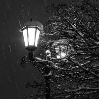 Фонарь и снег. ЧБ. :: Анатолий. Chesnavik.