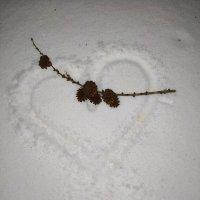 Наконец-то, снег...... :: °•●Елена●•° ♀