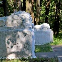Львы на охране парка. :: Сергей Пиголкин