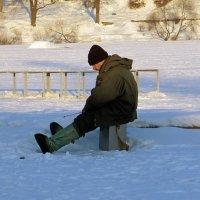 С утра сидит на озере любитель-рыбачок :: Вера Щукина