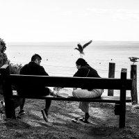 Чайки :: Natalia Pakhomova