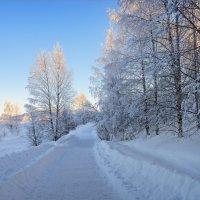 Зимняя дорога :: Shapiro Svetlana