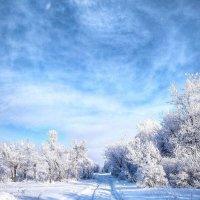 Вот и зима,на земле нашей... :: Георгиевич