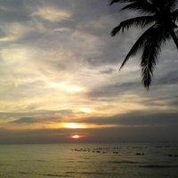 закат солнце :: миша горбачев