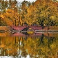 Осень :: Вадим Ефимчик