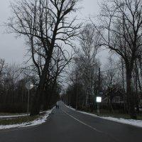 Куда ведете, вы, дороги? :: Tatiana Markova
