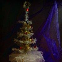 .... Ангел белым укроет крылом. :: Volodymyr Shapoval VIS t
