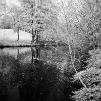 Был в парке пруд :: Николай Гирш