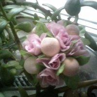 цветы :: миша горбачев