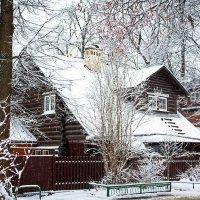 Зимний дом :: Александр