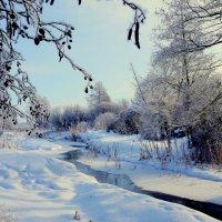 про зиму 4 :: Александр Прокудин