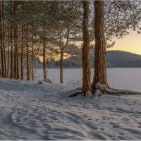 Рассвет на лесном озере... :: Владимир Чикота