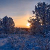 Зимнее холодное утро :: Георгий Муравьев