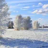 Январь :: Геннадий Супрун