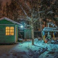 На природе....зимой :: Viacheslav Birukov